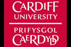 https://vpp4islands.eu/wp-content/uploads/2021/01/Cardiff-300x200.png